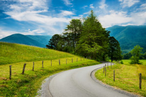 A winding mountain road in Cades Cove.