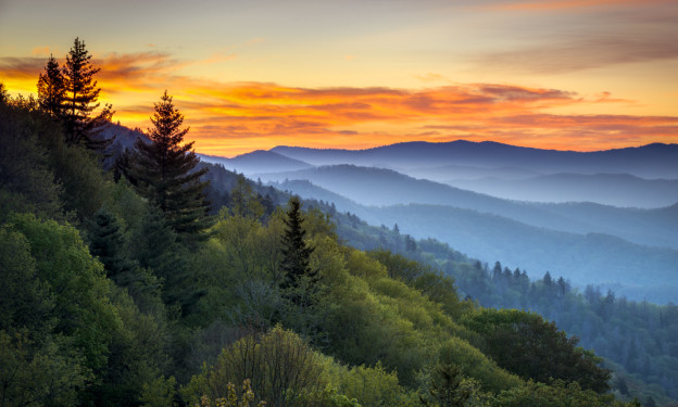 4 Ways To Conquer Boredom In A Pigeon Forge Cabin Rental