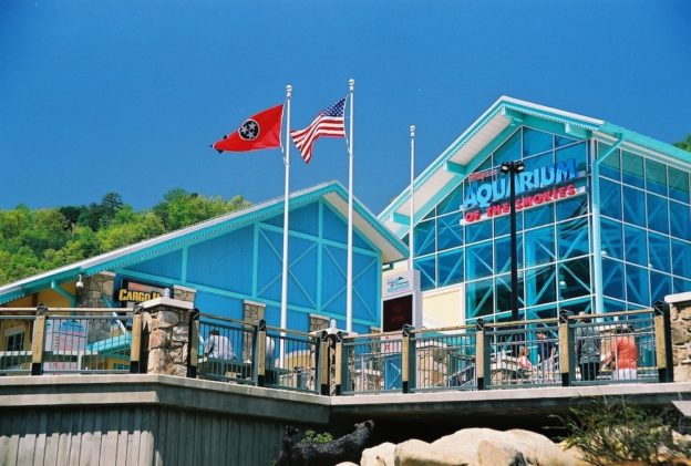 Ripley's Aquarium of the Smokies in downtown Gatlinburg.
