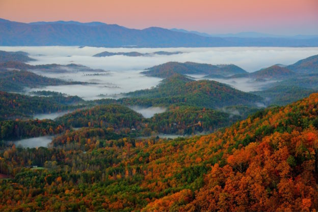 The stunning fall foliage in Gatlinburg TN.