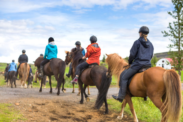 A guided horseback riding trail ride in the country.